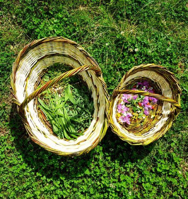 cosuri cu flori de la Forumul National de cules din flora spontana