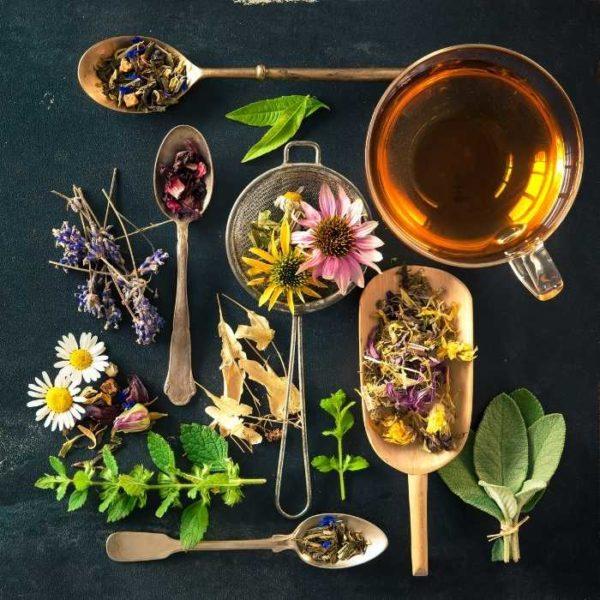 ceai plante medicinale