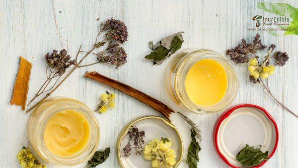 IncrEdible Curs de Tincturi din Plante Medicinale