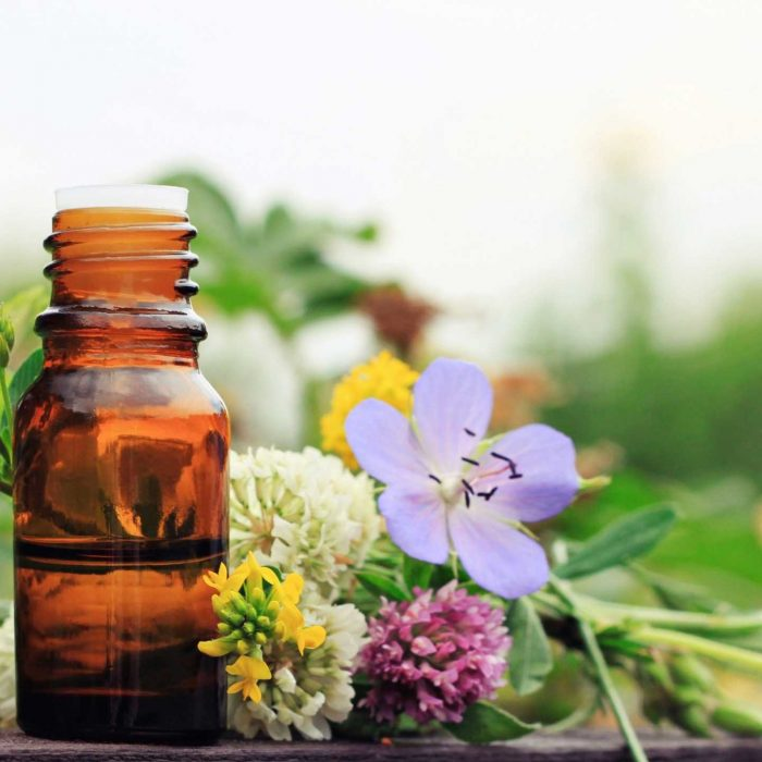 incredible-curs-plante-medicinale-tincturi