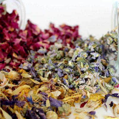 plante-medicinale-salbatice-ceaiuri